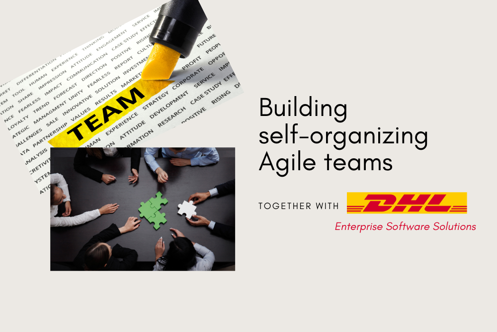 Self-organizing teams in an enterprise environment - is it possible?